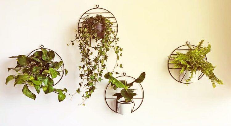 Top mẫu  kệ trang trí phù  hợp không gian nội thất đẹp hiện đại